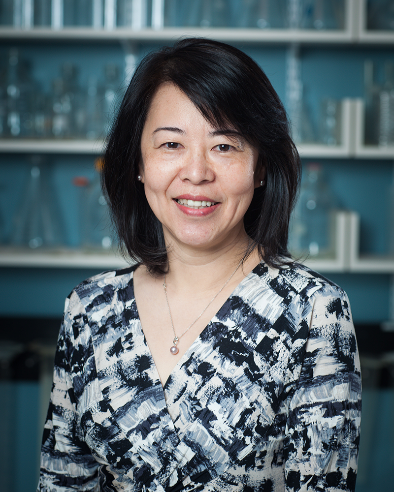 Ying Zhang, Ph.D.